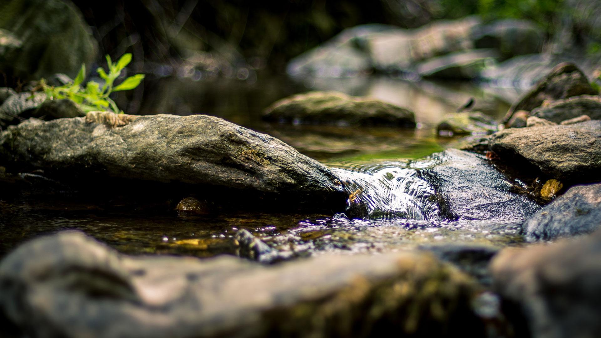 Petite cascade sur une rivière